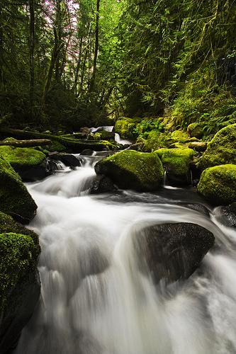 """""""Baker Creek Falls"""", de Kyle Kruchok"""