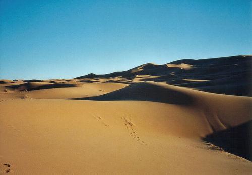 Sahara dune, de mtsrs, al Flickr