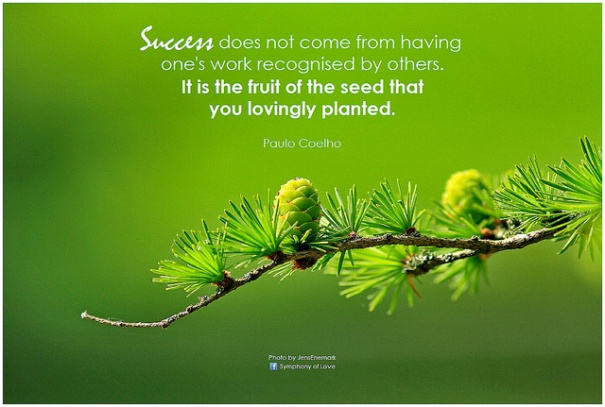 'Paulo Coelho Success does not come from', de BK, Flickr