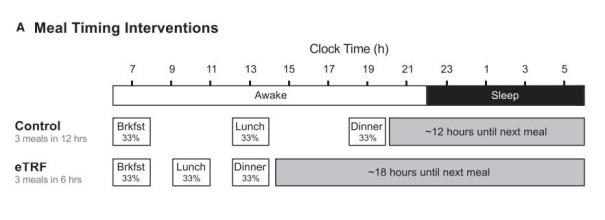 """Meal timing interventions"", a Cell Metabolism"