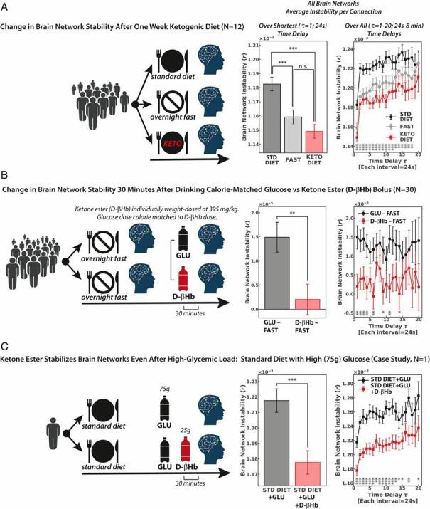 Comparativa de l'estabilitat de les xarxes neuronals en funció de la dieta